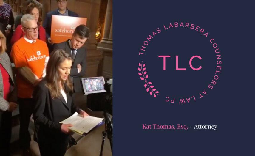 Albany-NY-News-10-Kat-Thomas-sm